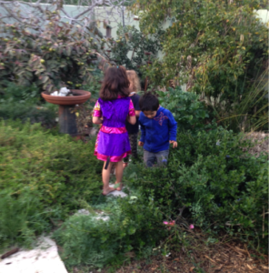 Nature Play At Home Rooted In Place Landscape