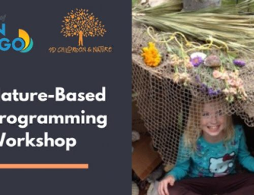 Nature-Based Programming Workshop: January 24, 2019